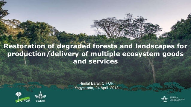 Himlal Baral, CIFOR Yogyakarta, 24 April 2018 Restoration of degraded forests and landscapes for production/delivery of mu...