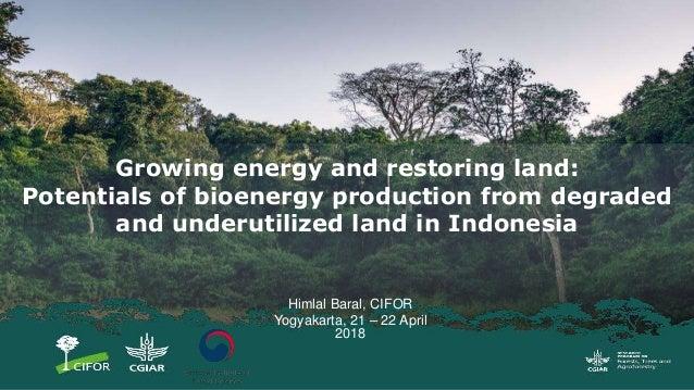 Himlal Baral, CIFOR Yogyakarta, 21 – 22 April 2018 Growing energy and restoring land: Potentials of bioenergy production f...