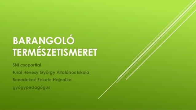 BARANGOLÓ TERMÉSZETISMERET SNI csoporttal Turai Hevesy György Általános Iskola Benedekné Fekete Hajnalka gyógypedagógus