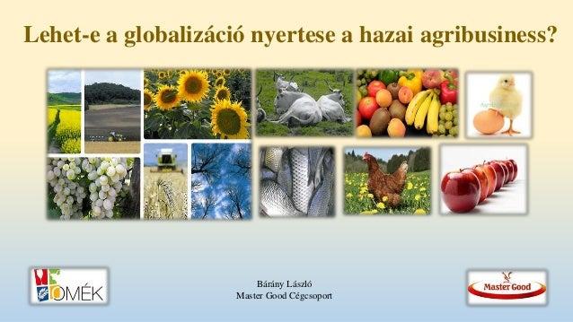 Lehet-e a globalizáció nyertese a hazai agribusiness? Bárány László Master Good Cégcsoport