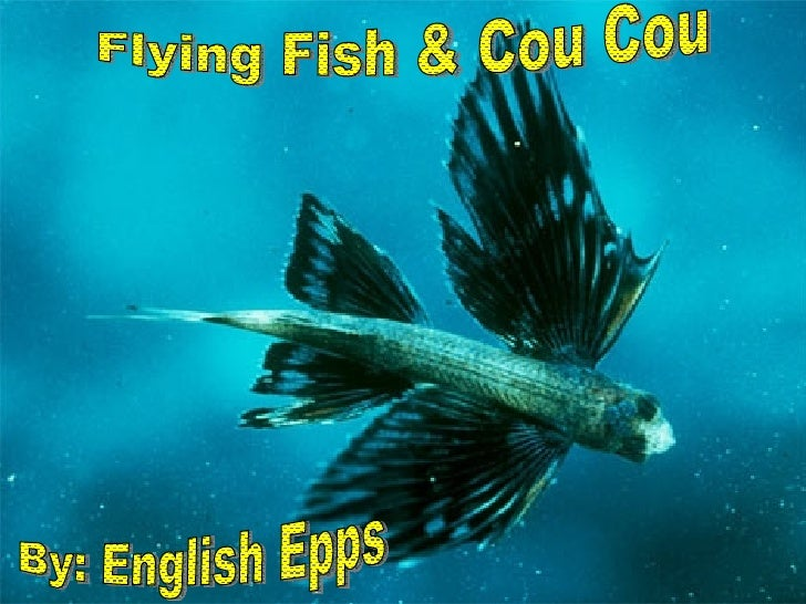 Flying Fish & Cou Cou By: English Epps