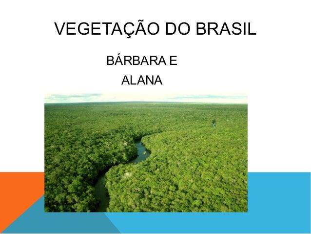 VEGETAÇÃO DO BRASILBÁRBARA EALANA