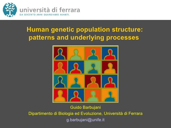 Human genetic population structure: patterns and underlying processes   Guido Barbujani Dipartimento di Biologia ed Evoluz...
