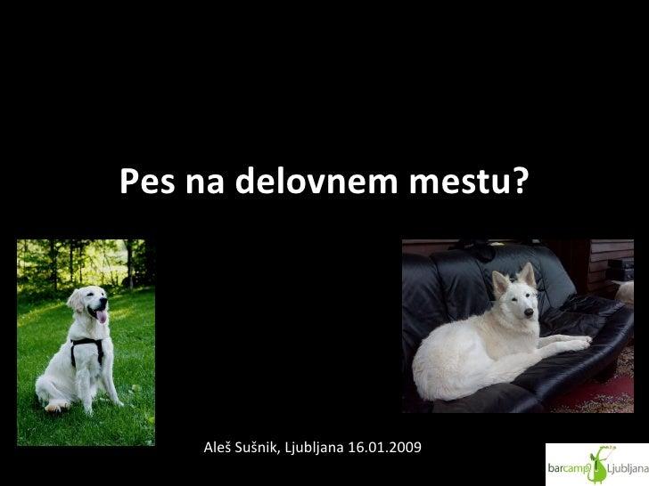 Pes na delovnem mestu? Aleš Sušnik, Ljubljana 16.01.2009