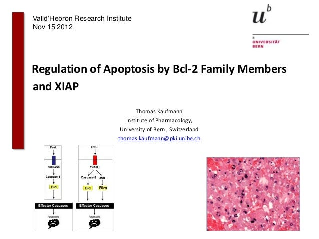 Valld'Hebron Research InstituteNov 15 2012Regulation of Apoptosis by Bcl-2 Family Membersand XIAP                         ...