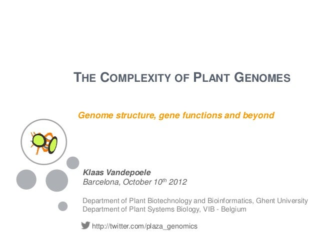 THE COMPLEXITY OF PLANT GENOMESGenome structure, gene functions and beyond Klaas Vandepoele Barcelona, October 10th 2012 D...