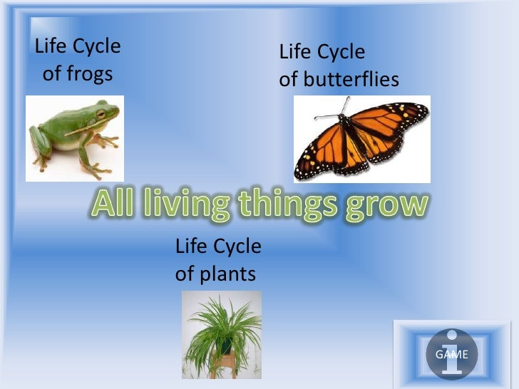Life Cycle                Life Cycle  of frogs                 of butterflies                  Life Cycle              of ...
