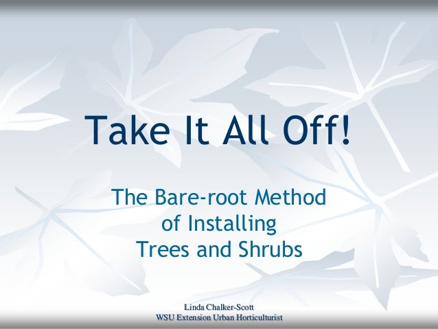 Take It All Off! The Bare-root Method      of Installing   Trees and Shrubs           Linda Chalker-Scott     WSU Extensio...