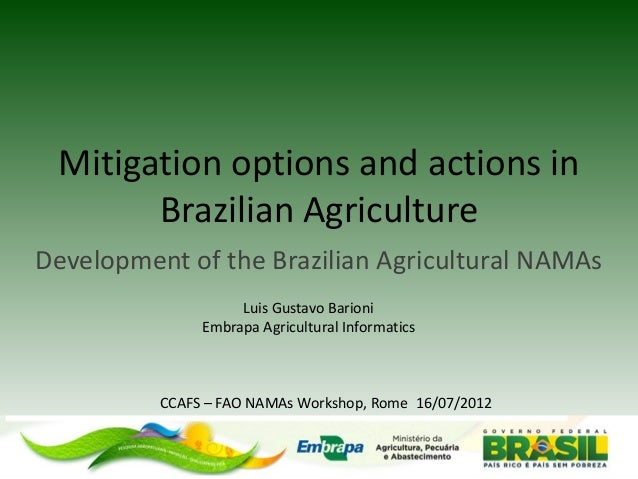 Mitigation options and actions in Brazilian Agriculture  Development of the Brazilian Agricultural NAMAs  Luis Gustavo Bar...