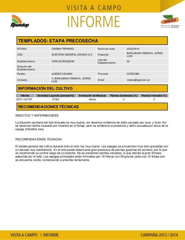 Agrotestigo-Maiz DEKALB-Campaña 1314-Informe Precosecha-BARLASINA Y CIA. S.A.-Nº 11