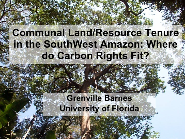 Communal Land/Resource Tenure in the SouthWest Amazon: Where do Carbon Rights Fit? Grenville Barnes University of Florida