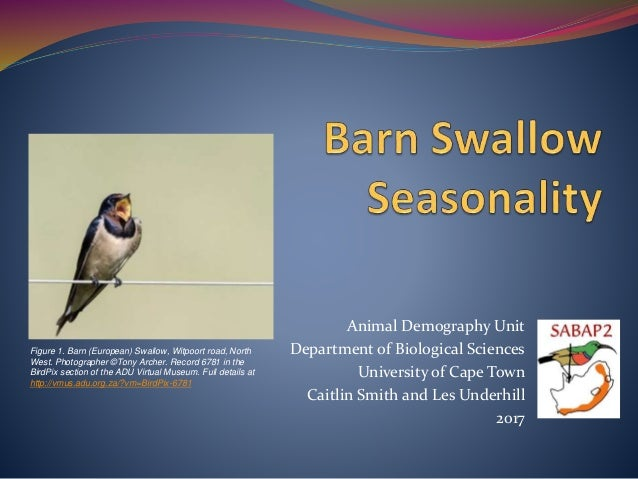 Animal Demography Unit Department of Biological Sciences University of Cape Town Caitlin Smith and Les Underhill 2017 Figu...