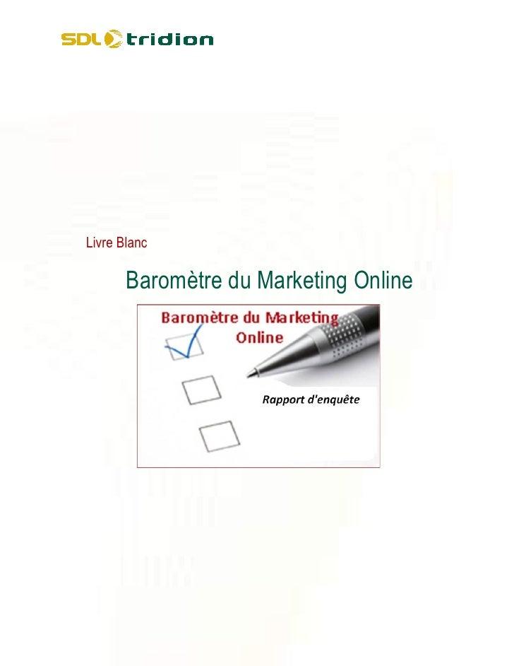 Les entreprises sont conscientes de l'intérêt du canal web pour leurs campagnes marketing. Elles l'utilisent pour différen...
