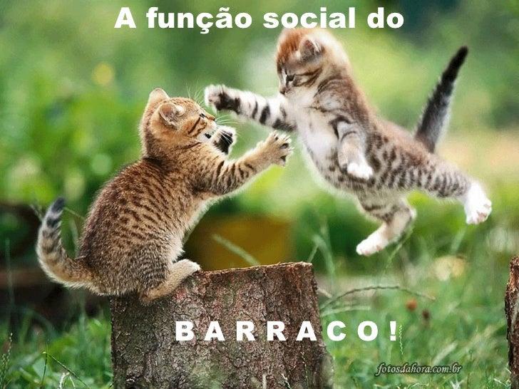 A função social do   BARRACO!