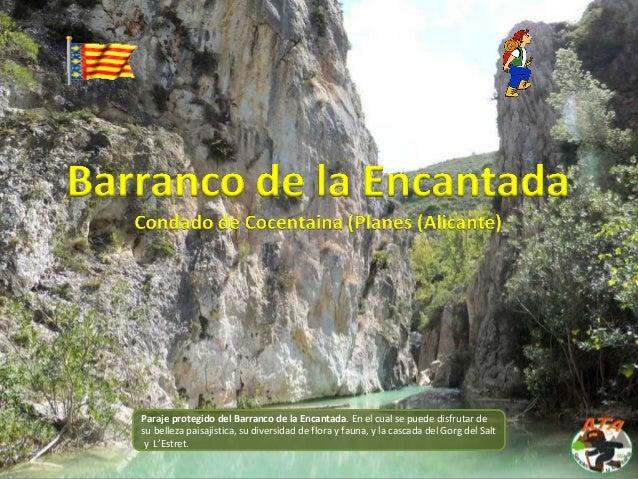 Paraje protegido del Barranco de la Encantada. En el cual se puede disfrutar de su belleza paisajística, su diversidad de ...