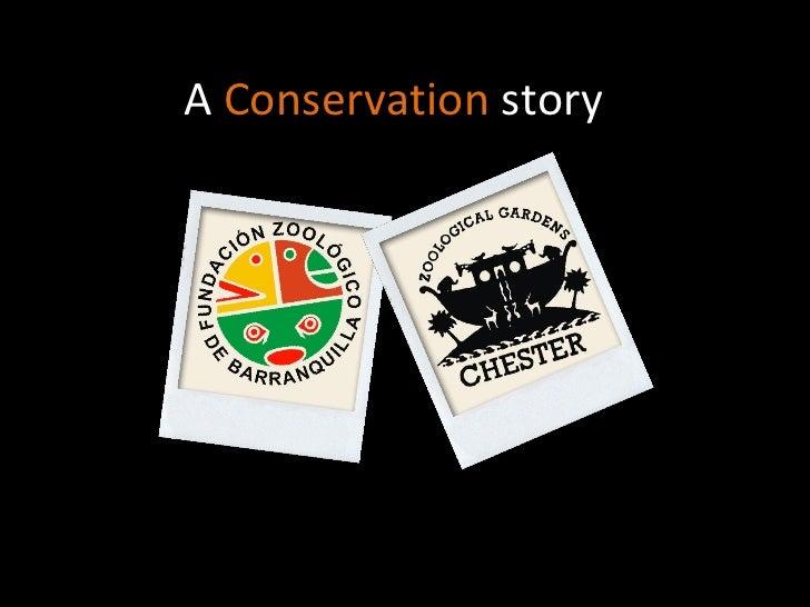 A  Conservation  story