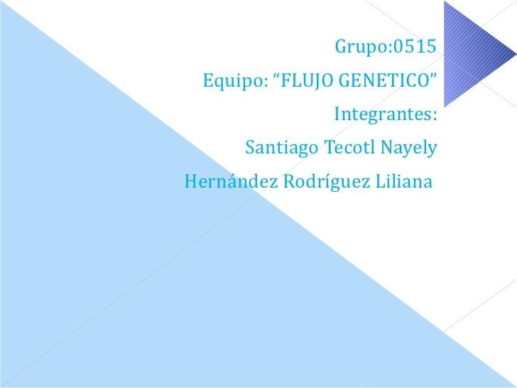 <ul><li>Grupo:0515