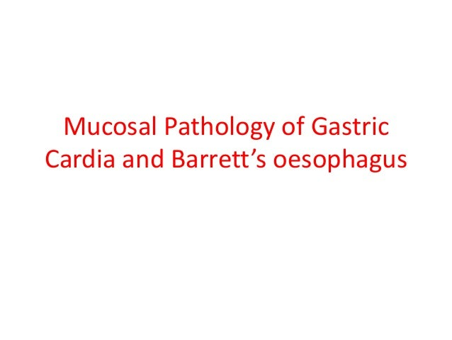 Mucosal Pathology of Gastric Cardia and Barrett's oesophagus