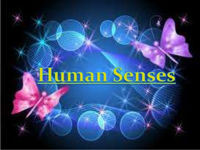 Human beings have amultitude of senses. Sighthearing, taste, smell or andtouch     are     the    fivetraditionally recogn...