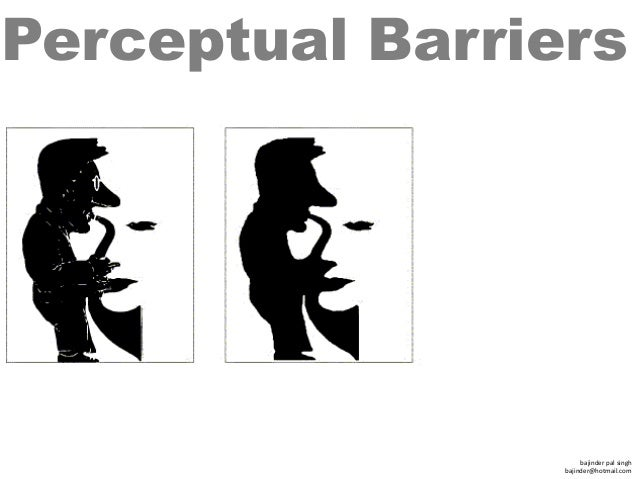 perceptual barrier with examples There are different types of barriers that can pose challenges to effective communication in the buzzle article to follow, you will understand about physical barriers in communication.