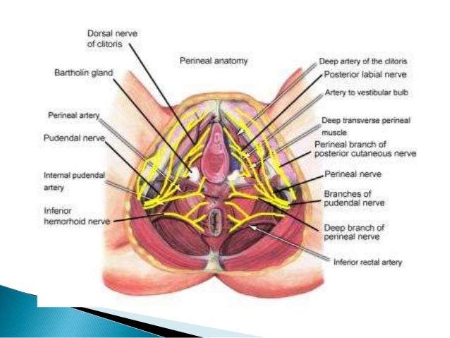 Bartholinitis Bartholin's cyst
