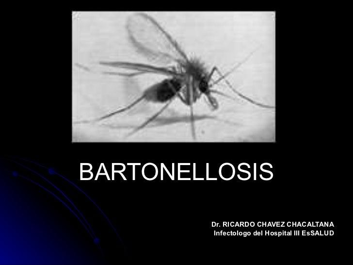 BARTONELLOSIS Dr. RICARDO CHAVEZ CHACALTANA Infectologo del Hospital III EsSALUD