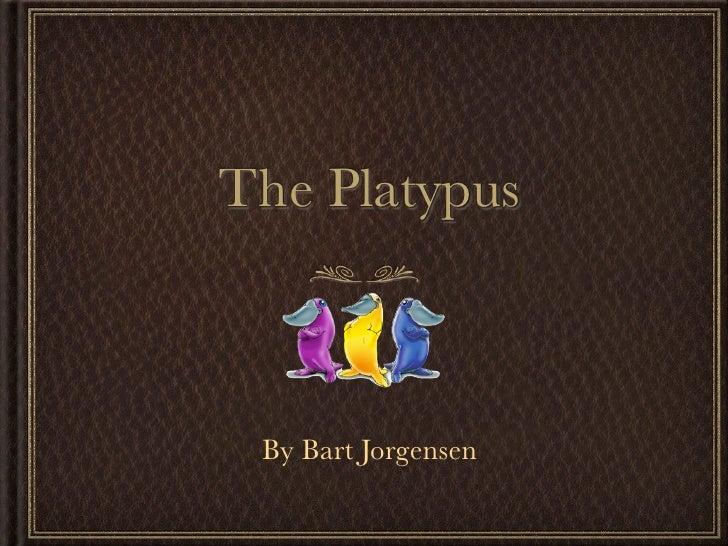 The Platypus     By Bart Jorgensen