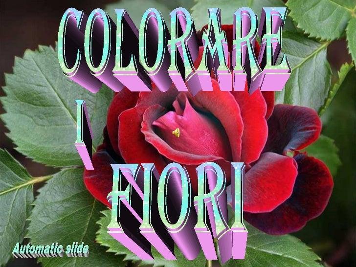 Barvnaa cvetoča simfinija