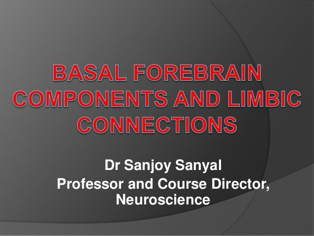Dr Sanjoy Sanyal Professor and Course Director, Neuroscience