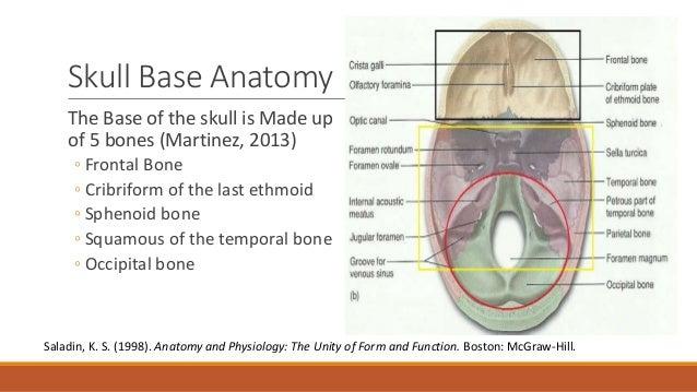 Basal skull fractures