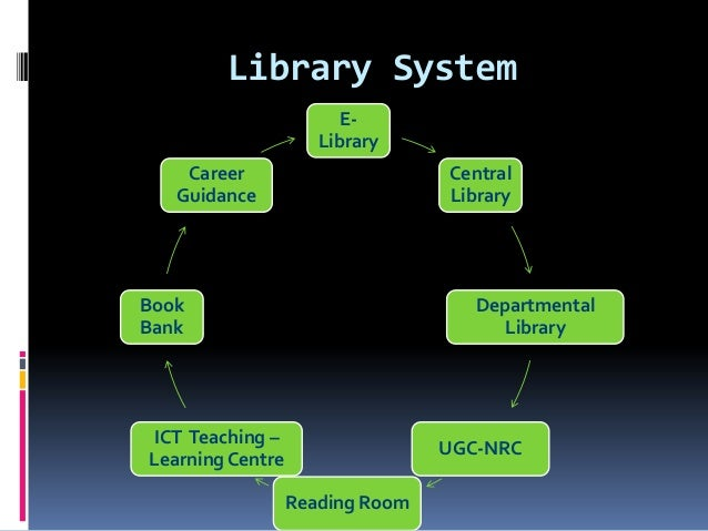 Delimitation of library system Essay