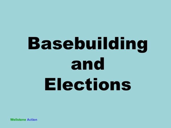 Wellstone   Action Basebuilding and Elections