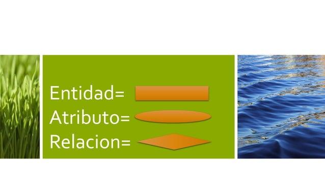 Entidad=Atributo=Relacion=