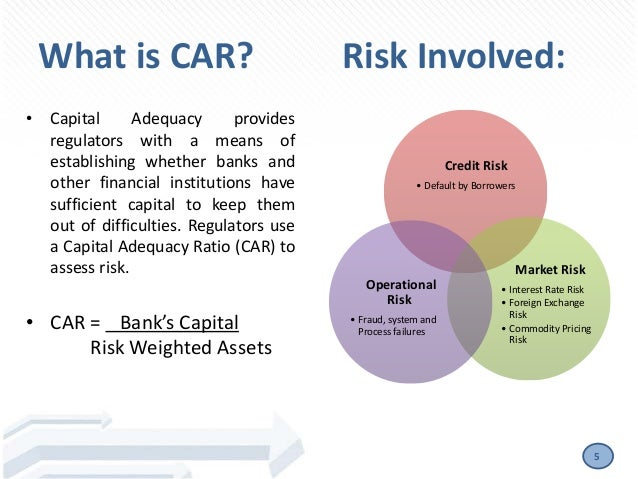 Foreign exchange risks management