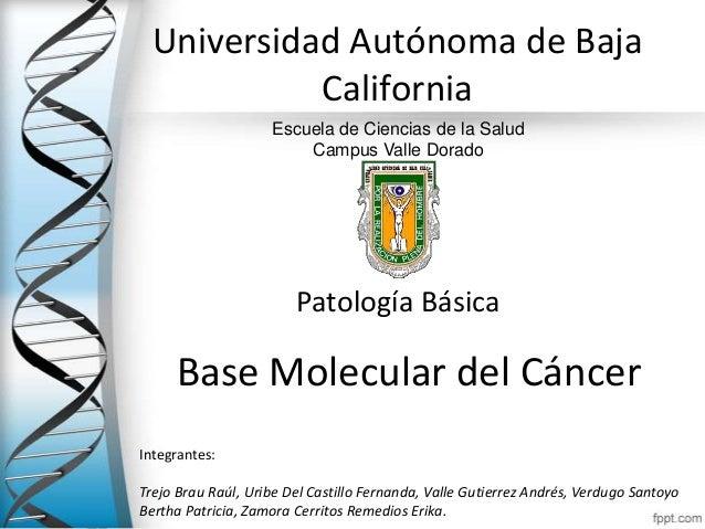 Universidad Autónoma de Baja            California                    Escuela de Ciencias de la Salud                     ...