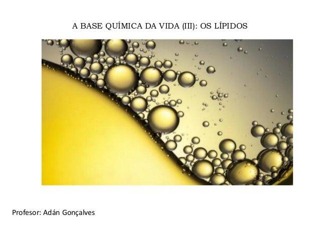 A BASE QUÍMICA DA VIDA (III): OS LÍPIDOS Profesor: Adán Gonçalves