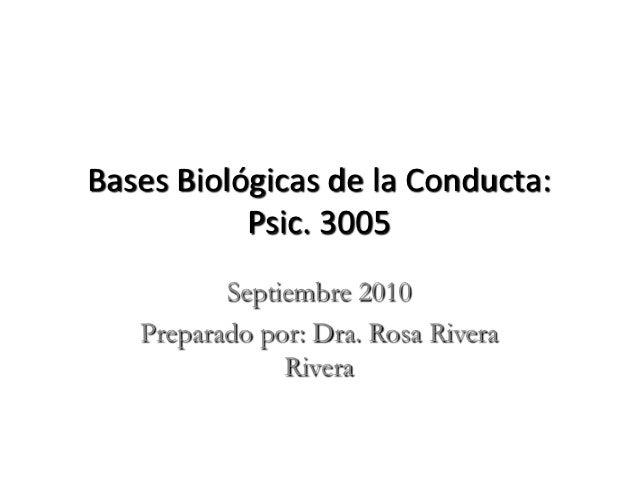 Bases Biológicas de la Conducta:           Psic. 3005          Septiembre 2010   Preparado por: Dra. Rosa Rivera          ...