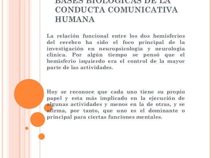 BASES BIOLÓGICAS DE LA  CONDUCTA COMUNICATIVA  HUMANALa relación funcional entre los dos hemisferiosdel cerebro ha sido el...