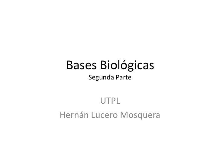 Bases Biológicas      Segunda Parte         UTPLHernán Lucero Mosquera
