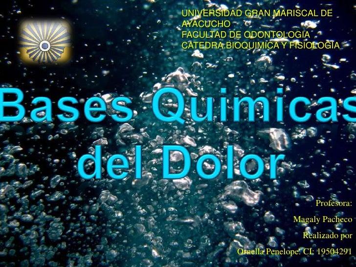 UNIVERSIDAD GRAN MARISCAL DE AYACUCHO<br />FACULTAD DE ODONTOLOGIA<br />CATEDRA:BIOQUIMICA Y FISIOLOGIA<br />Bases Quimica...