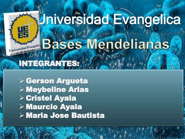 INTEGRANTES:  Gerson Argueta  Meybeline Arias  Cristel Ayala  Maurcio Ayala  Maria Jose Bautista