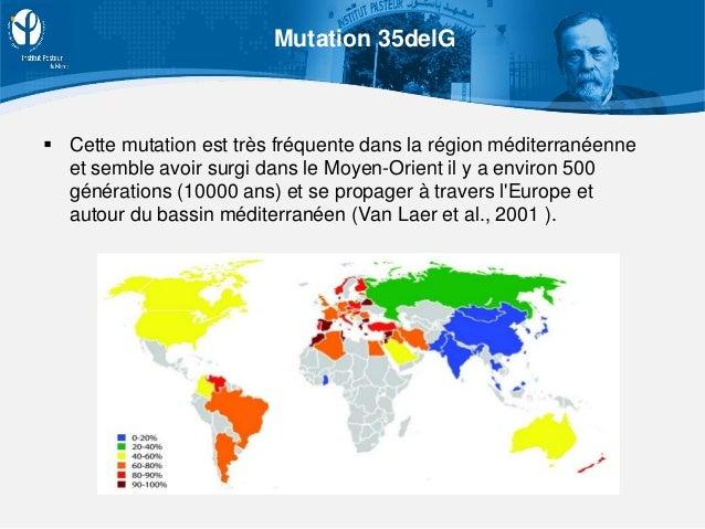  Cette mutation est très fréquente dans la région méditerranéenne et semble avoir surgi dans le Moyen-Orient il y a envir...