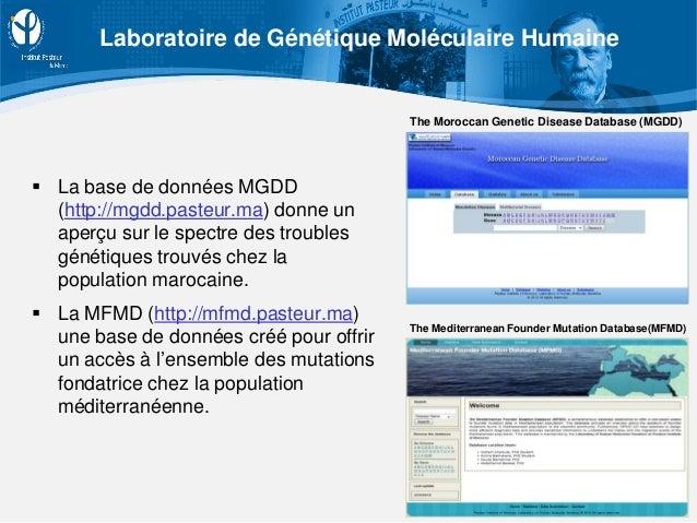  La base de données MGDD (http://mgdd.pasteur.ma) donne un aperçu sur le spectre des troubles génétiques trouvés chez la ...