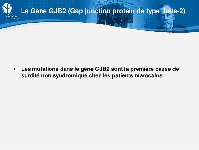• Les mutations dans le gène GJB2 sont la première cause de surdité non syndromique chez les patients marocains Le Gène GJ...