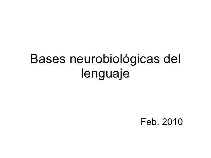 Bases neurobiológicas del lenguaje Feb. 2010