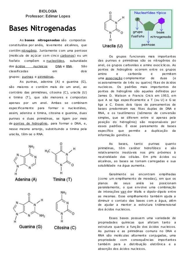 BIOLOGIA Professor: Edimar Lopes Bases Nitrogenadas As bases nitrogenadas são compostos constituídos por anéis, levemente ...