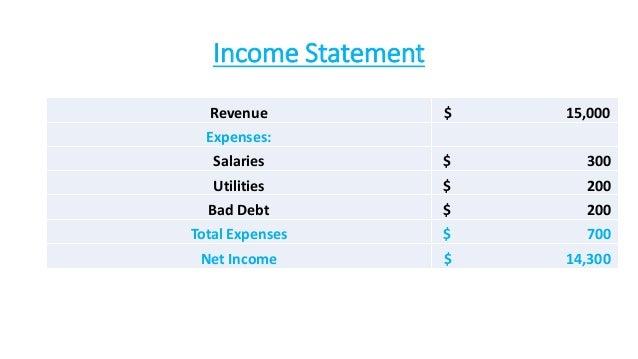 Income Statement Revenue $ 15,000 Expenses: Salaries $ 300 Utilities $ 200 Bad Debt $ 200 Total Expenses $ 700 Net Income ...