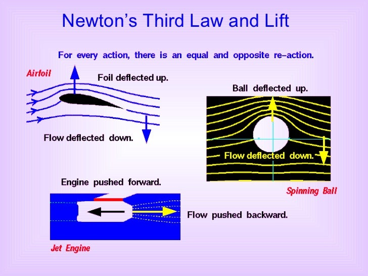 Newton's Third Law and Lift