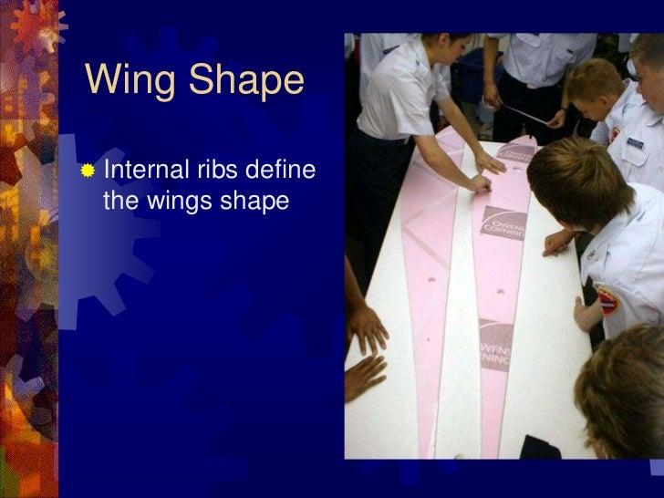 Internal ribs define the wings shape<br />Wing Shape<br />