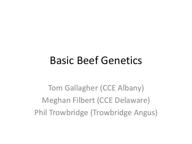 Basic Beef Genetics Tom Gallagher (CCE Albany) Meghan Filbert (CCE Delaware) Phil Trowbridge (Trowbridge Angus)